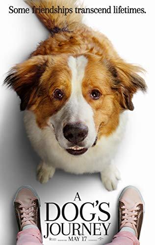 (A Dog's Journey Movie Poster Limited Wall Art Print Photo Josh Gad, Dennis Quaid, Kathryn Prescott Size 11x17#2 )