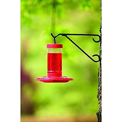 First Nature 16 oz. Hummingbird Feeder