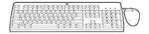 HP 631348-B21 - Pack de teclado y ratón USB, negro