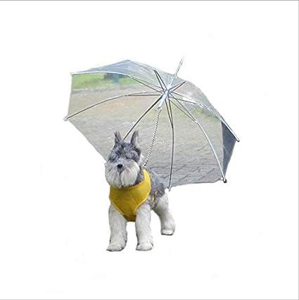 MRXUE Perro Impermeable Paraguas Paraguas Transparente para Perros Pequeños/Medios con Correa