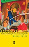 Everyday Culture: Finding and Making Meaning in a Changing World by David Trend (2008-03-01)