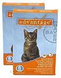 12 MONTH Advantage Orange for cats under 9lbs, My Pet Supplies