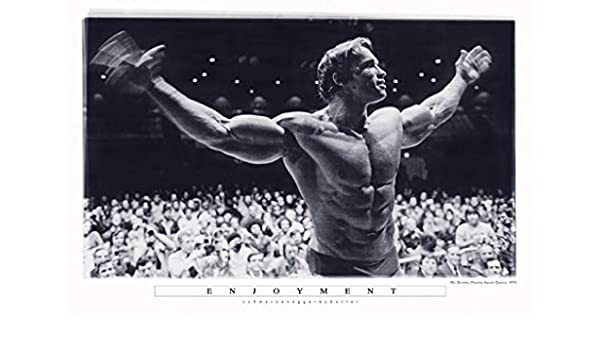 Yutirerly Enjoyment - Arnold Schwarzenegger Mr Olympia Madison Square Garden 27x40 (Motivational Poster): Amazon.es: Hogar