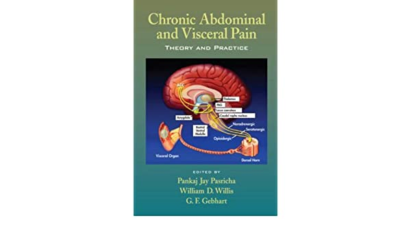 Chronic Abdominal and Visceral Pain: Theory and Practice