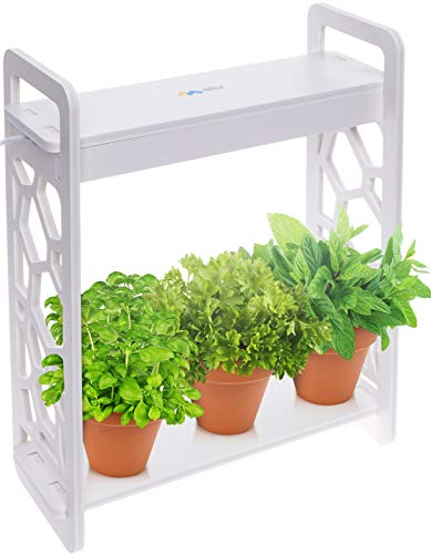 Mindful Design LED Indoor Herb Garden with Timer – at Home Mini Planter Kit for Herbs, Succulents, and Vegetables w/Hexagon Cutout (White)