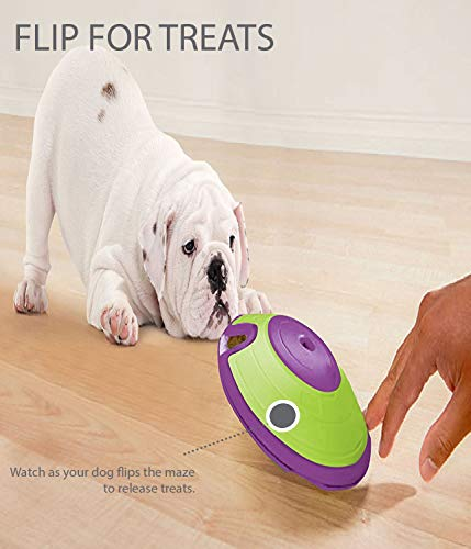 Maze Treat Dispensing Dog Toy Brain and Exercise Game for Dogs, by Nina Ottosson Green/Purple 7
