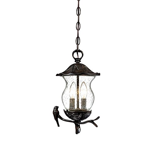 Acclaim 7566BC/SD Avian Collection 2-Light Outdoor Light Fixture Hanging Lantern, Black (Collection Outdoor Hanging Lamp)