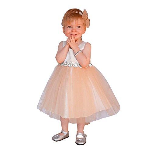 Petite Adele Baby Girls Champagne Satin Tulle Rhinestone Flower Girl Dress 12M ()