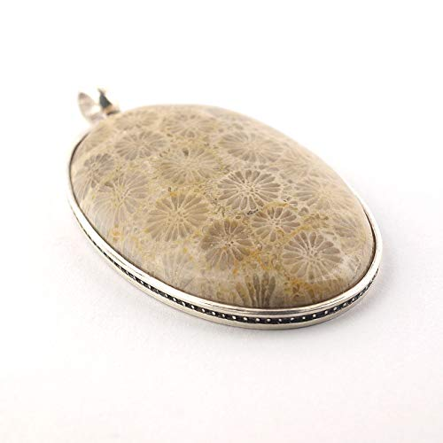 Fossilized Coral pendant oval shaped in beige brown color set in sterling silver and size of 1.5x0.98x0.24 inch