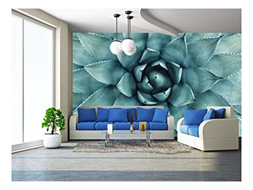 wall26 - Sharp Pointed Agave Plant Leaves - Removable Wall Mural | Self-Adhesive Large Wallpaper - 100x144 inches (Removable Spine)