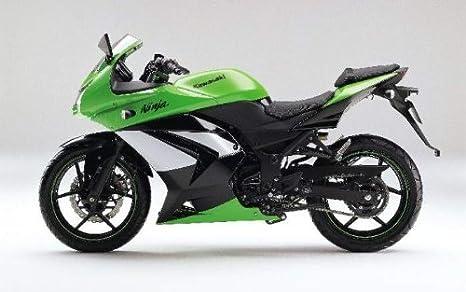 2008 - 2012 Ninja 250R izquierda carenado Original de ...