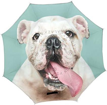 Double Layer Inverted Inverted Umbrella Is Light And Sturdy Funny English Bulldog Puppy Colourful Socks Reverse Umbrella And Windproof Umbrella Edge