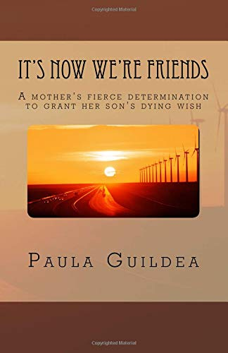 It's Now We're Friends: A mother's desperate journey, to fulfil her son's dying wish pdf epub