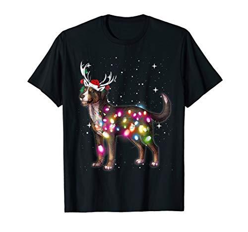 Christmas Lights Greater Swiss Mountain Dog ()