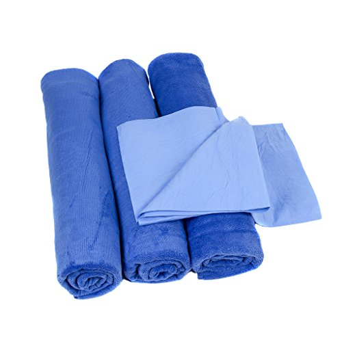 Relentless Drive Neighbor's Envy XL Microfiber Towels - Extra Large 24 x 60 inch Auto Detailing Towels - Professional Quality - Pack of 3 Towels