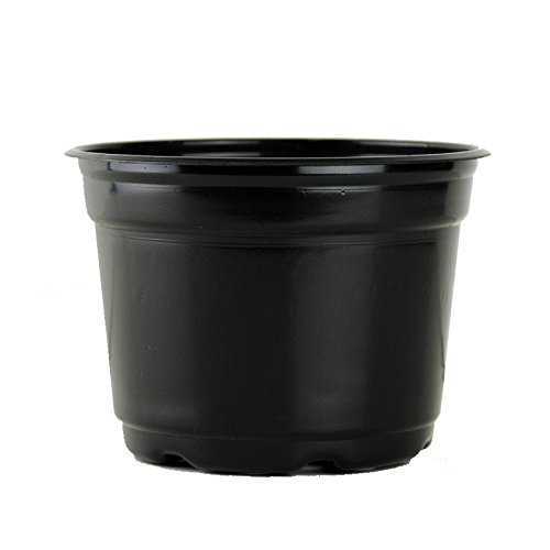 10 pack flower pots - 9