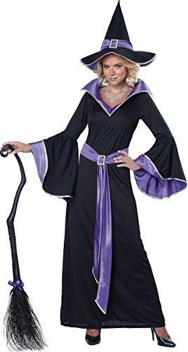 California Costumes Women's Incantasia, The Glamour Witch,Black/Purple,Medium -