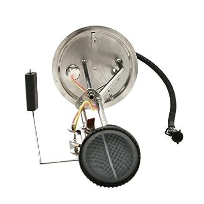 Delphi FL0272 Fuel Level Sending Unit: Automotive