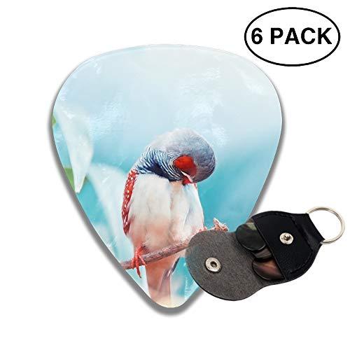 Celluloid Guitar Picks 3D Printed Animal Finch Birds Best Guitar Bass Gift for Lover