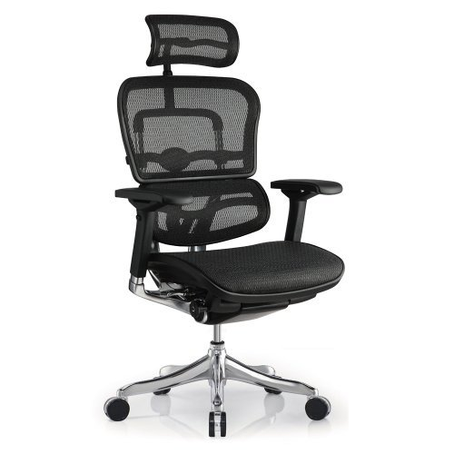 - Eurotech Ergohuman Black Mesh Office Chair ME22ERGLT