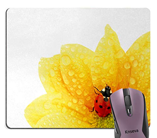 Knseva Cute Ladybug on Gerbera Wet Petals Water Drops Yellow Sunflowers Mouse Pad Nature Scene Mouse Pads