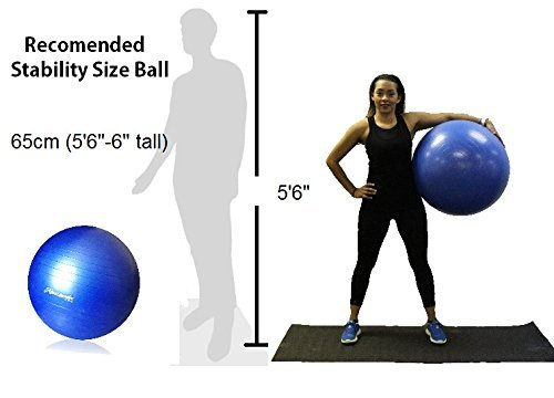 Exercise Fitness Ball 65cm Yoga Gym Workout Core Strength Stability Training Improve Back Pain Hand Pump Included