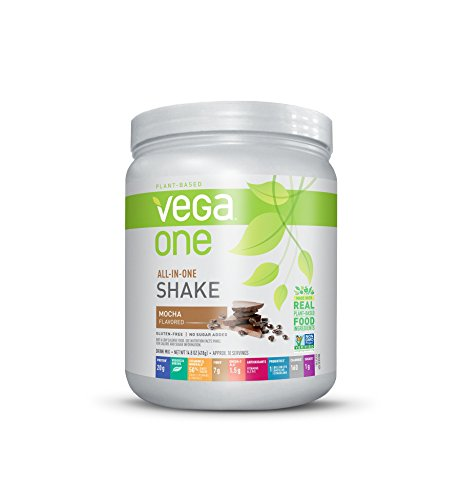 Vega One All-In-One Nutritional Shake Mocha (10 Servings) - Plant Based Vegan Protein Powder, Non Dairy, Gluten Free, Non GMO, 14.8 Ounce (Pack of 1)