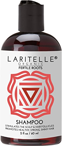 Laritelle Organic Travel Size Shampoo 2 oz | Fortifying, Strengthening & Rejuvenating | Stops Hair Shedding, Promotes New Hair Growth | Ayurvedic Herbs, Lavender, Ginger, Rosemary, Patchouli & Cloves by Laritelle