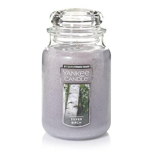Apple Macintosh Candle - Yankee Candle Large Jar Candle, Silver Birch