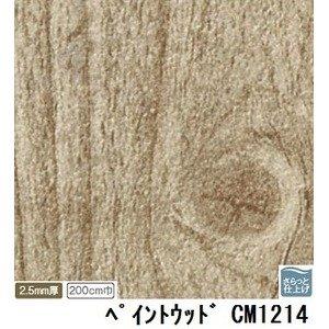 サンゲツ 店舗用クッションフロア ペイントウッド 品番CM-1214 サイズ 200cm巾×2m B07PGD7HQW