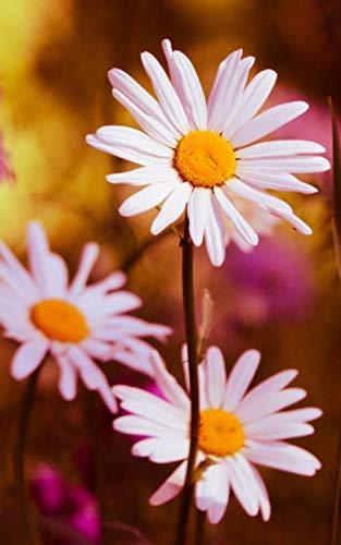 Flower Arranging Baskets - Notebook: Daisy Daisies Flower Flowers Bouquet Floristry Florist 5