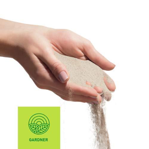 kostenlose Lieferung sehr feine K/örnung 5000 kg Quarzsand 1 kg hemmend gegen Unkraut bestens geeignet zum Einkehren von Pflasterfugen Fugensand wei/ß