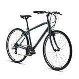 Raleigh Bikes Detour 2 LG/19
