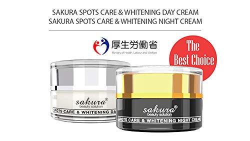 Amazon.com: Sakura - Juego de crema japonesa cremosa: Beauty