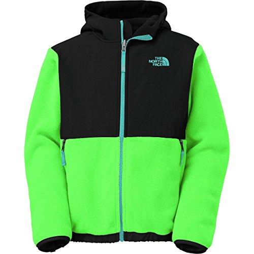 The North Face Denali Hooded Fleece Jacket - Boys' Recycled Krypton Green, (The North Face Denali Jacket)