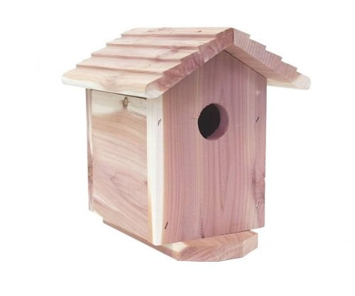 OUTDOOR PORTABLE BIRD HOUSE HIDDEN CAMERA WITH SELF RECORDING DVR RECORDER 720X480, SD MEMORY, COLOR SONY CCD IMAGE 480 RESOLUTION, UP TO 30HRS BATTERY