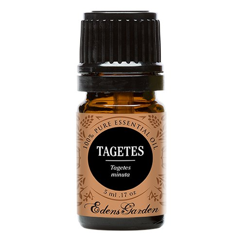 Tagetes 100% Pure Therapeutic Grade Essential by Edens Garden Oil- 5 ml