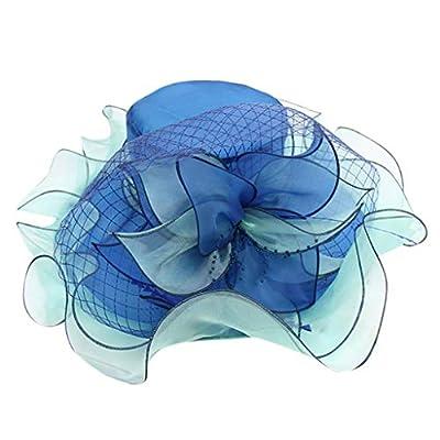 Women's Organza Church Kentucky Derby Hat Wide Brim Summer Bridal Tea Party Beach Wedding Hat