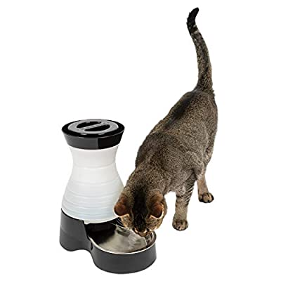 PetSafe Healthy Pet Gravity Food or Water Station, Automatic Dog and Cat Feeder or Water Dispenser, Small, Medium, Large