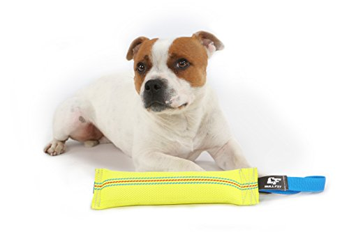 New Dog Bite Tug Toy - Extra Tough, Durable, Interactive Toys For Medium to Large Dogs by Bull Fit - Best For Tug of War, Fetch & Puppy Training! - Safe Fire Hose Dog Tug with Strong Handle, It Floats by Bull Fit (Image #1)