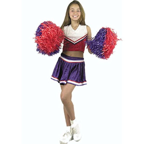 Girl's Cheerleader Costume (Size: X-small 4-6)