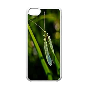 Florfliege Lacewing Zlatooka IPhone 5C Cases, Protective Case for Iphone 5 Cute Protective Okaycosama - White