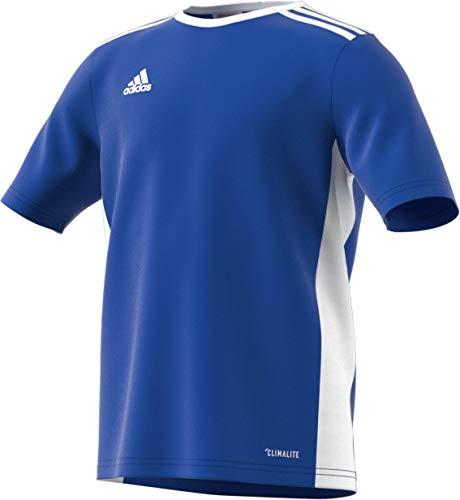 adidas Entrada 18 Jersey, Bold Blue/White, Small