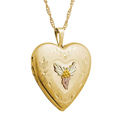 Mt.Rushmore Gold-Filled Black Hills Heart Locket ()