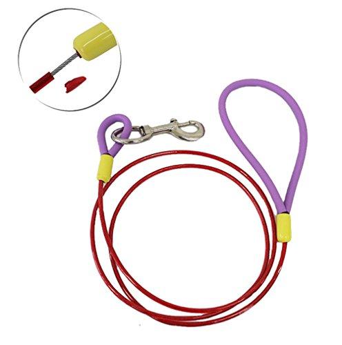 IBEET Durable Rope Leash Handle product image