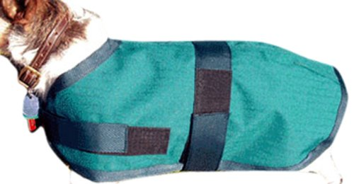 High Spirit Dog Rain Coat, 16-Inch, Hunter Green/Navy