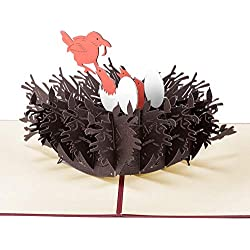 Paper Spiritz Nest Pop up Birthday Card Wedding Christmas Anniversary - Laser Cut 3D pop up card Love all Occasion - Handmade Thanksgiving Greeting Card for Kids Baby