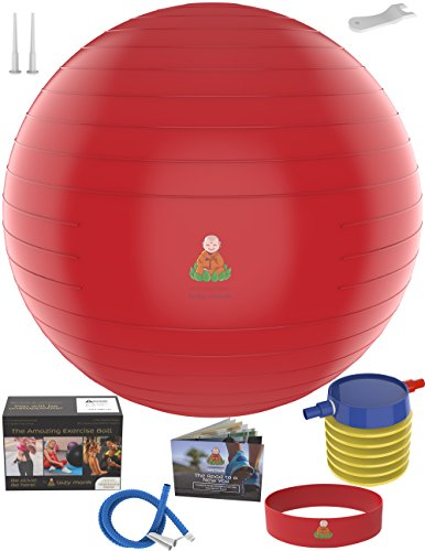 Exercise Ball Stability Fitness Balls | Best Professional