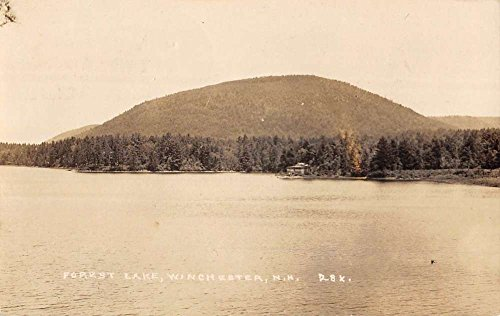 Winchester New Hampshire Forest Lake Real Photo Antique Postcard - Lake Forest Md