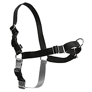 PetSafe Easy Walk Dog Harness, No Pull Dog Harness, Black/Silver, Small (B000BHUVM4) | Amazon price tracker / tracking, Amazon price history charts, Amazon price watches, Amazon price drop alerts